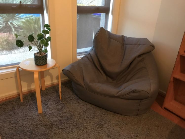 beanbag and plant